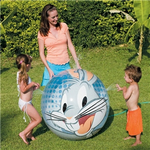 Splash & Play Beach Ball