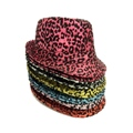 Hat Leopard Print Assorted Colours